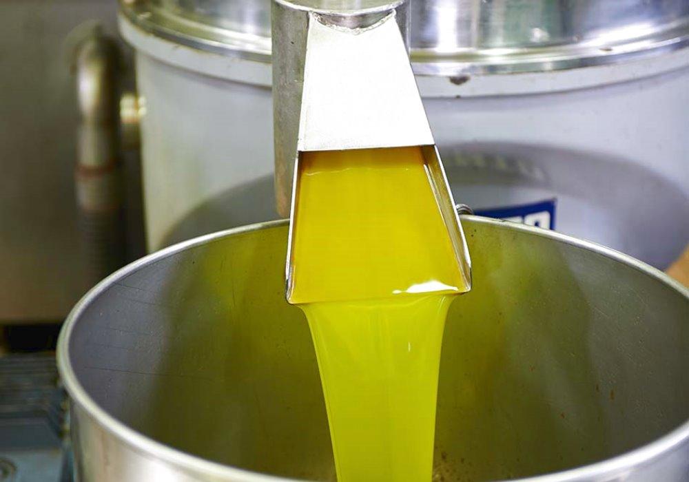 COSA INFLUENZA LA QUALITA' DELL'OLIO D'OLIVA Perché gli oli non sono tutti uguali