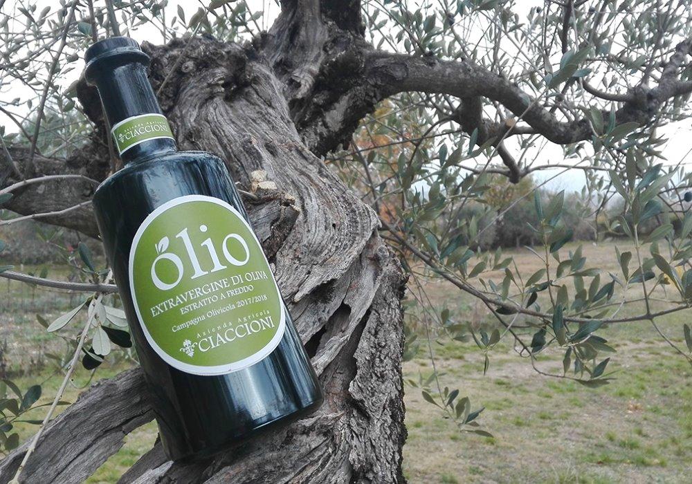 Olio Extravergine di Oliva Ciaccioni Scopri il nostro Olio Toscano